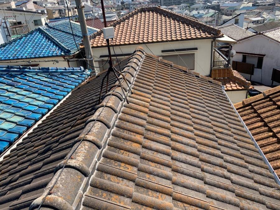 調査した屋根の全体の様子