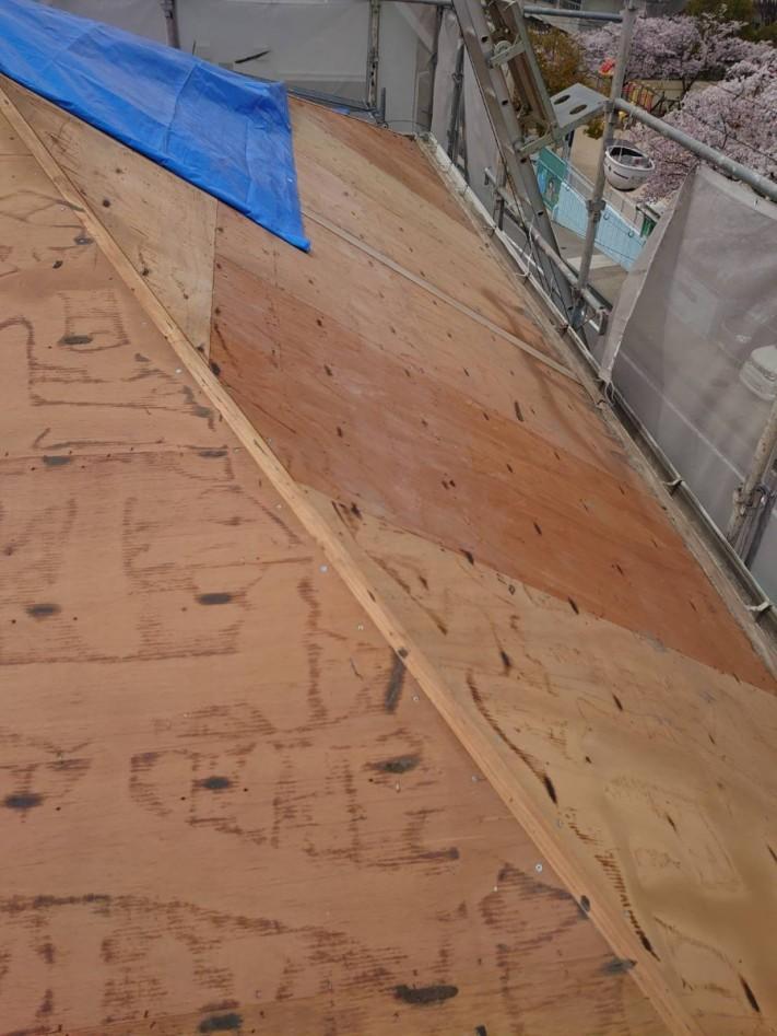 既存の屋根下地の様子