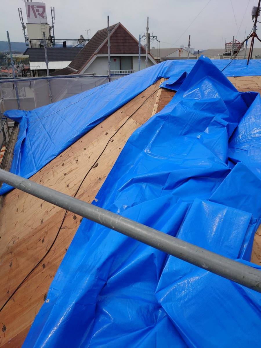 ブルーシートを屋根に貼っている様子