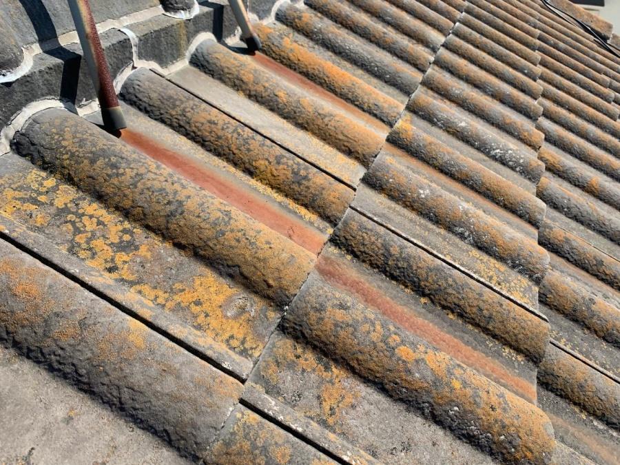 火災保険適応外、苔が繁殖しているセメント瓦の様子