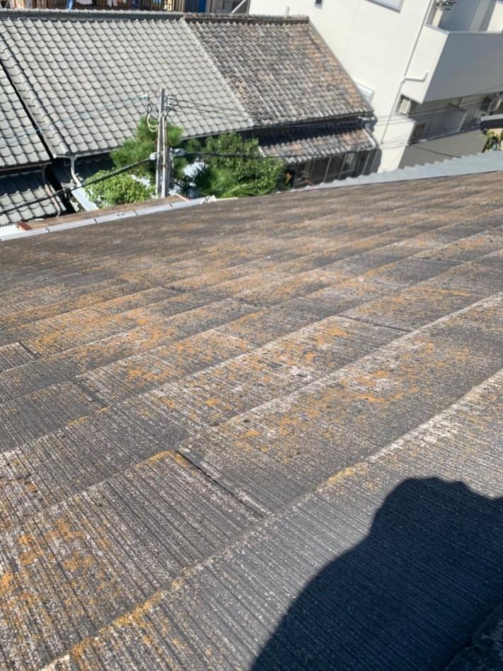 苔が繁殖しているスレート屋根