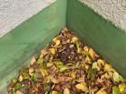 神戸市西区のベランダ工事前に点検した時のベランダに落ち葉が溜まっていた様子