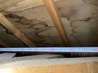 淡路市雨漏り点検での天井に出来た雨シミの様子