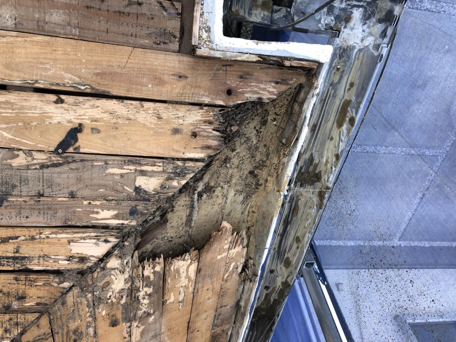 神戸市垂水区での屋根葺き替え工事で下地が腐っている様子