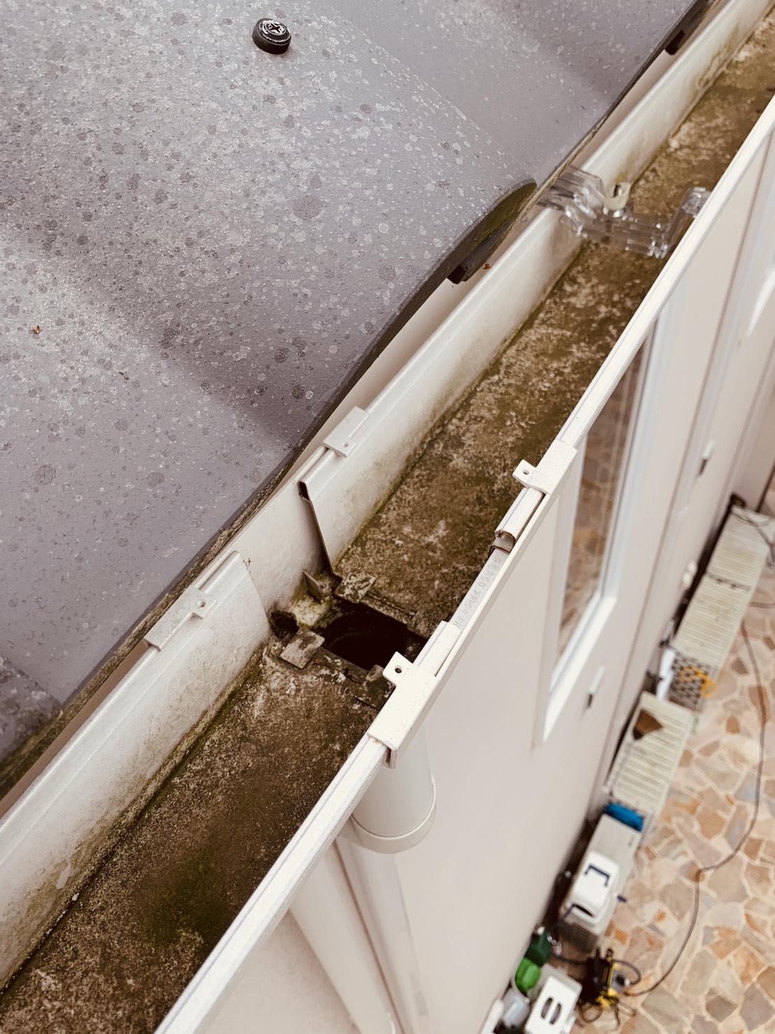 雨樋を掃除した様子