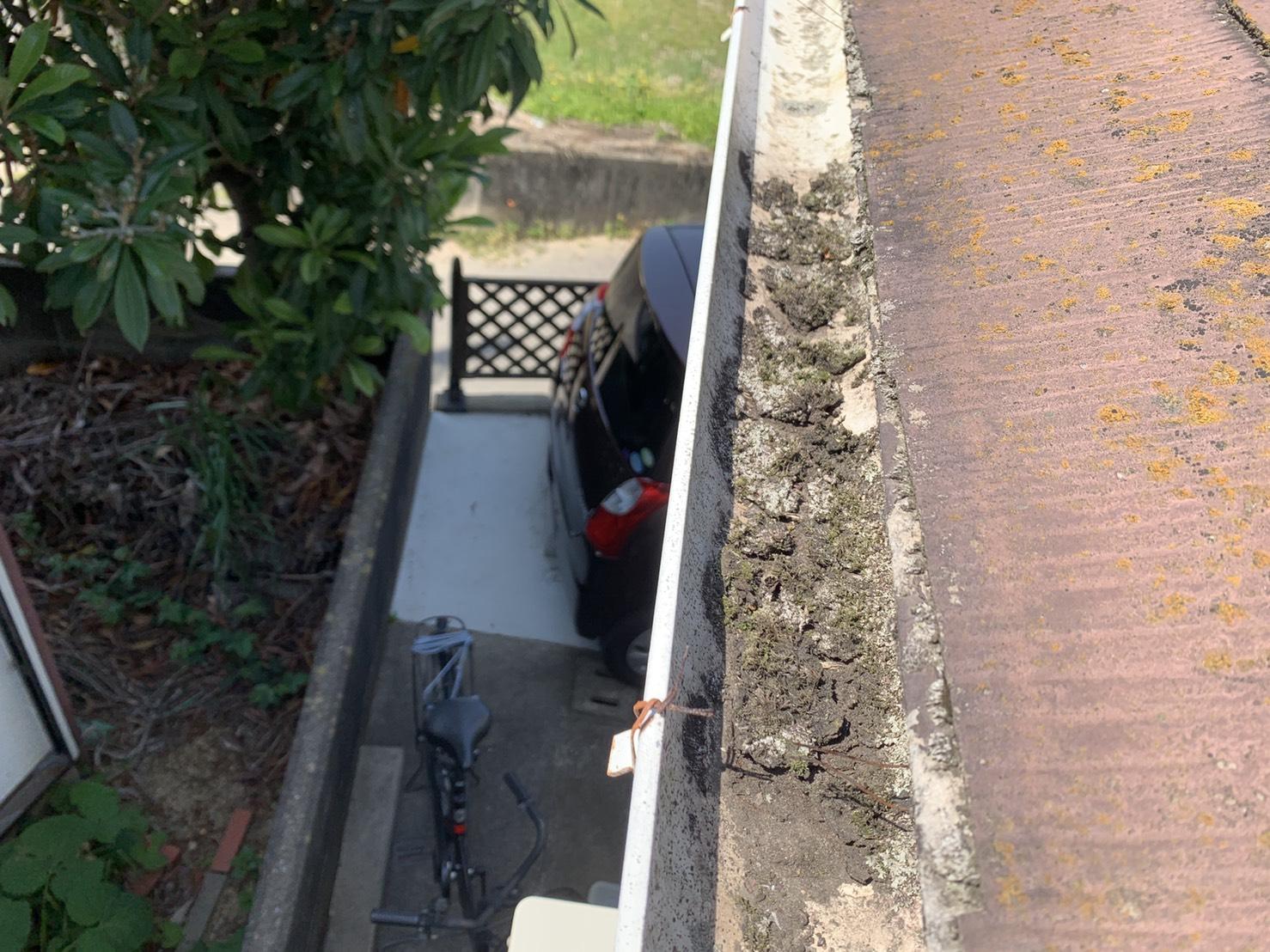 加古川市での屋根診断で雨樋に苔が溜まっている様子