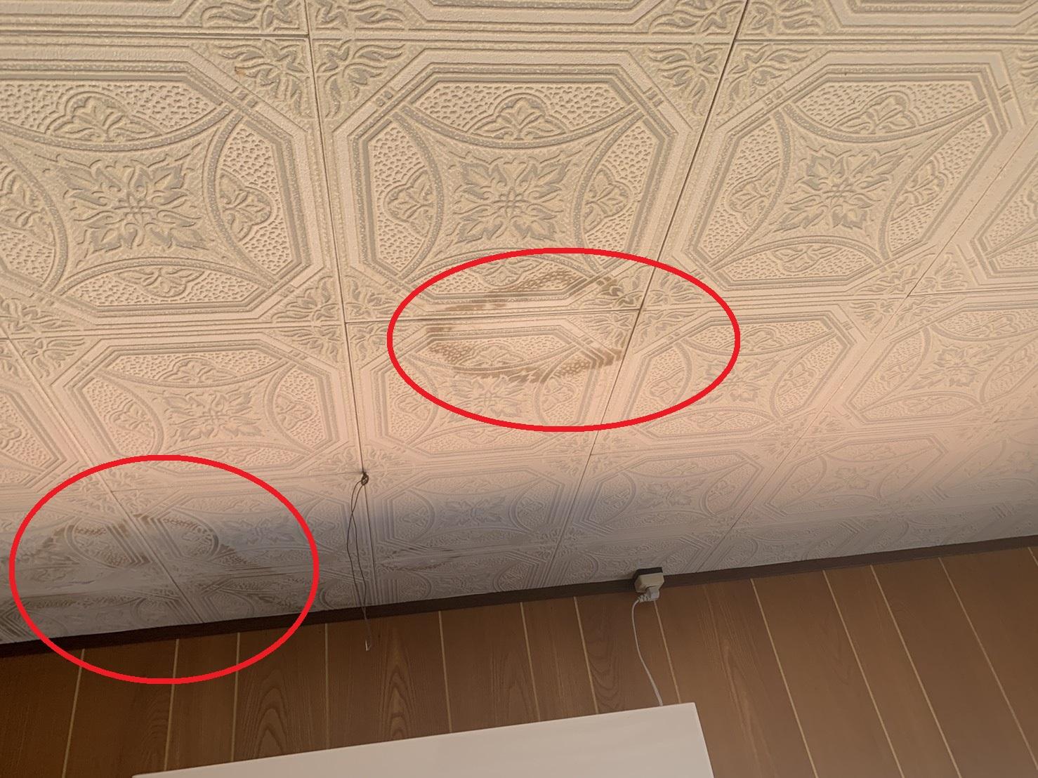 豪雨での雨漏りで天井に大きなシミが出来ている様子
