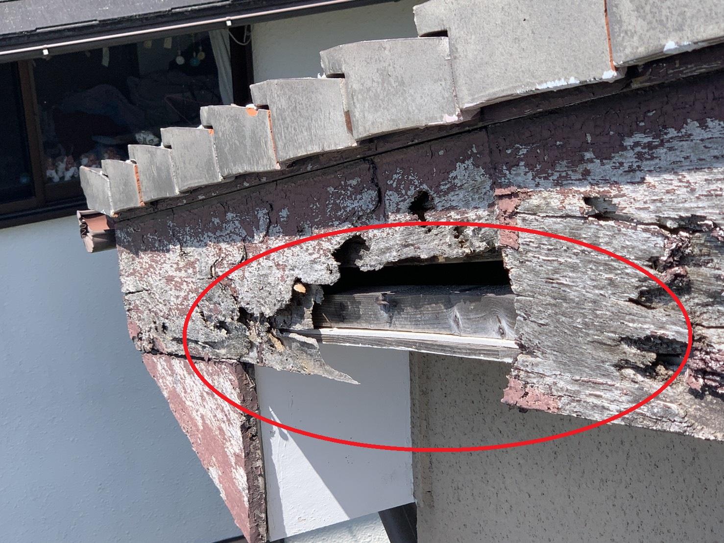 強風によるアンテナ倒壊で破損した破風板