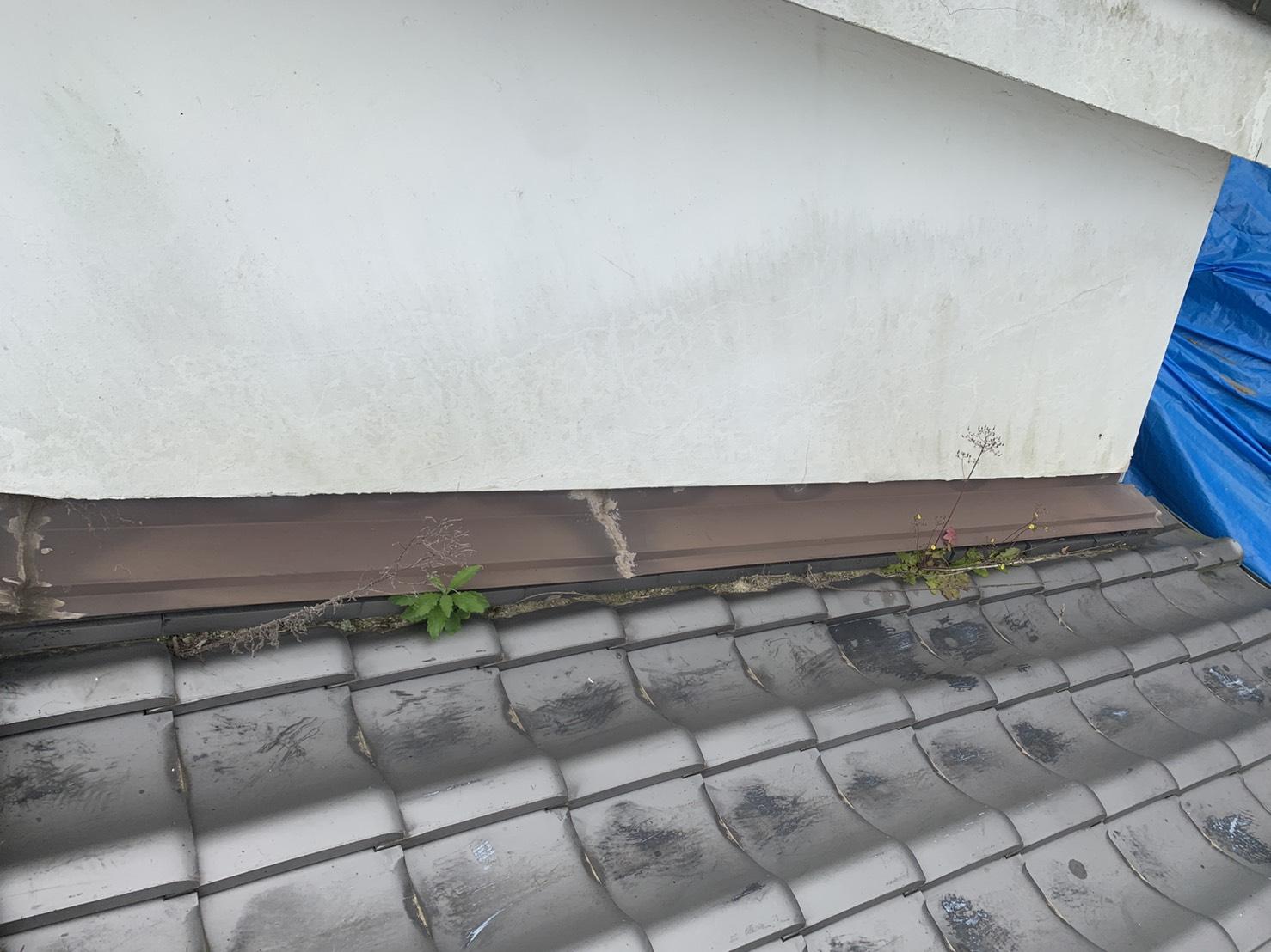 神戸市中央区の雨漏り調査で壁際に草が生えている様子