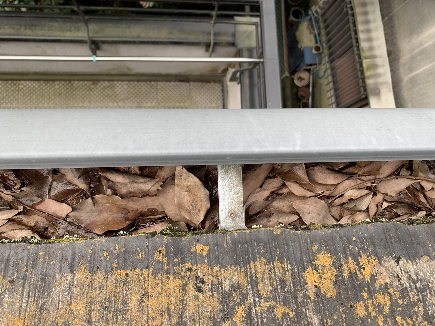 雨樋内部に落ち葉が詰まっている様子