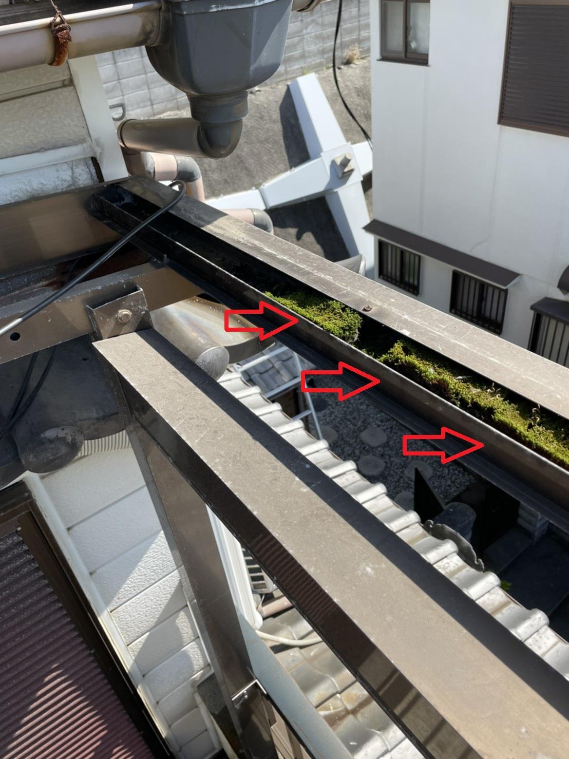 三田市での波板交換で撤去後に発見した雨樋内部の大量の苔