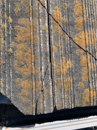 苔がびっしり生えているセメント瓦
