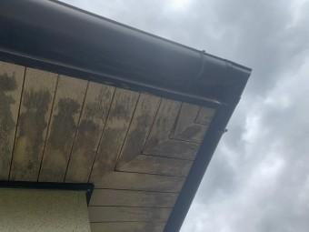 雨がしみ込んだ軒天の様子
