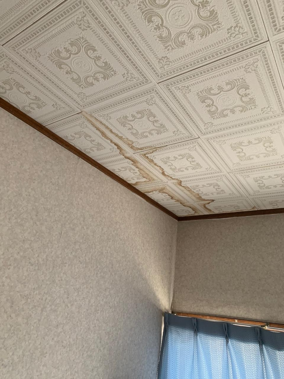 トイレの天井のシミの様子