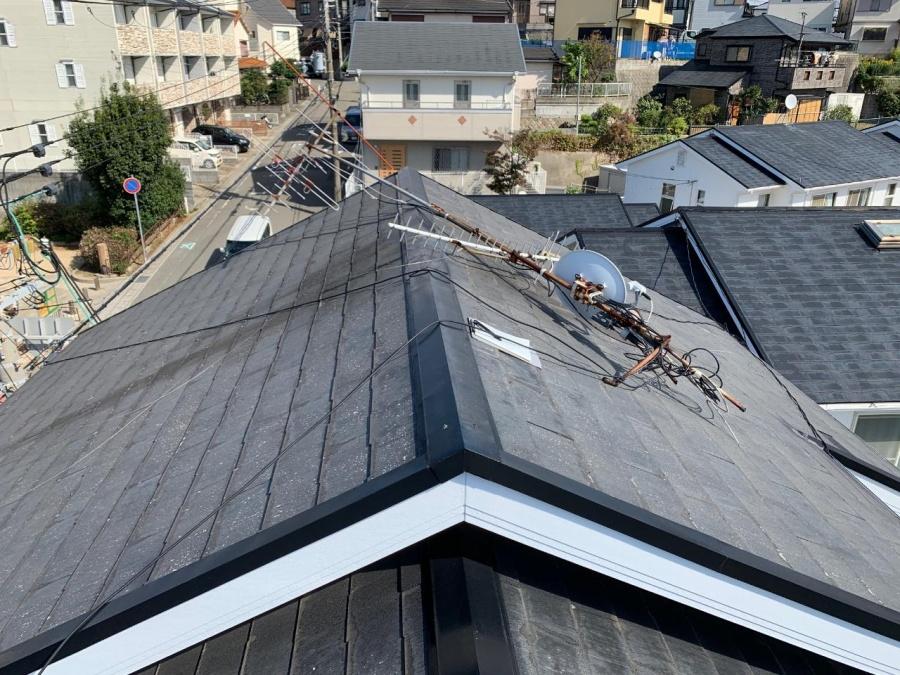 屋根の全体の様子